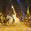 The Medieval Times