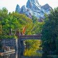 Disney World 2010 Animal Kingdom