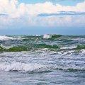 Atlantic Ocean, FL