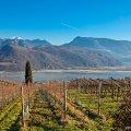 Adige, Italy